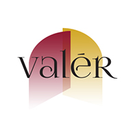 valer_box_logo